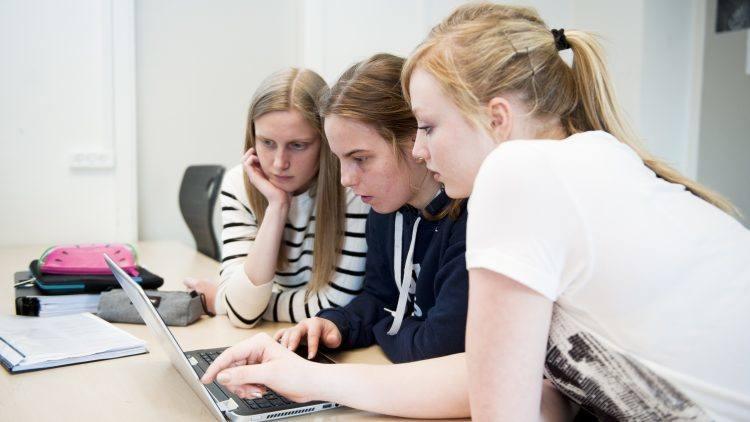 Gruppearbejde med eleverne på Lyngs